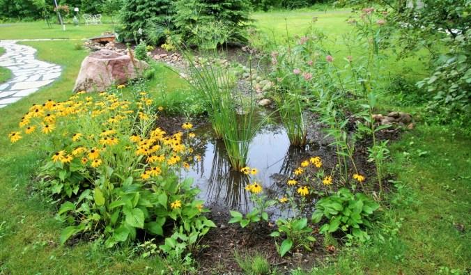 texas rain garden