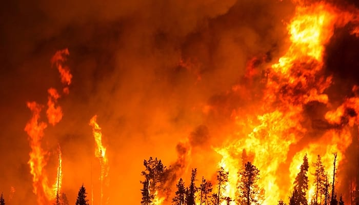 Escalating Risks From California's Wildfires Than Vehicle Emissions