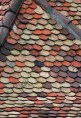 scaled roof tiles