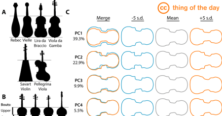 'Imitation, Genetic Lineages, and Time Influenced the Morphological Evolution of the Violin', Daniel H. Chitwood, CC BY 4.0, via ccthing.tumblr.com
