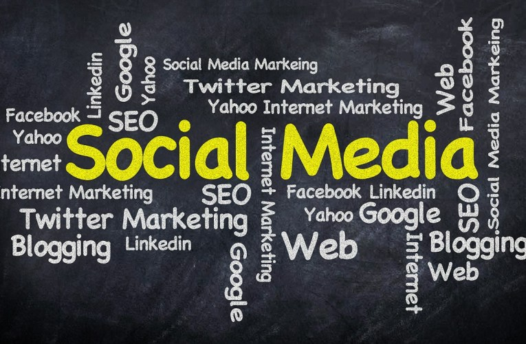 Which is the best traffic source – SEO or Social Media?