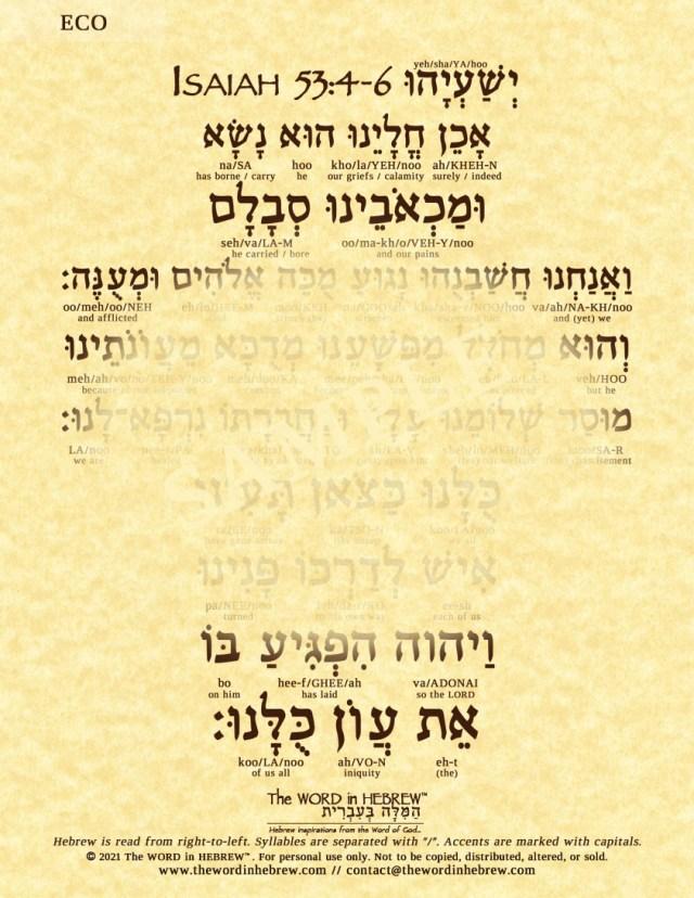 isaiah53_4_6_hebrew_V_ECO_web_2021