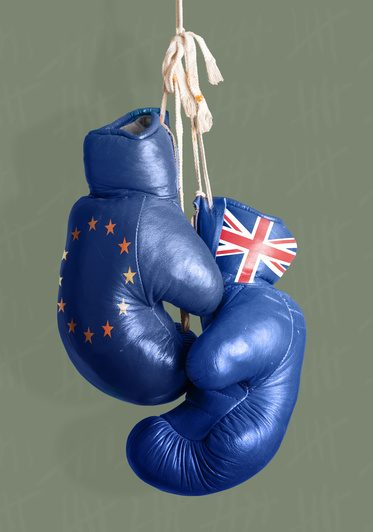 The EU Referendum, Brexit, and the Five Stages of Grieving