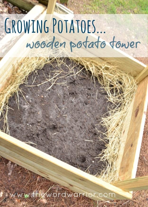 Blog - WW-Farm Life-potato-wooden-tower