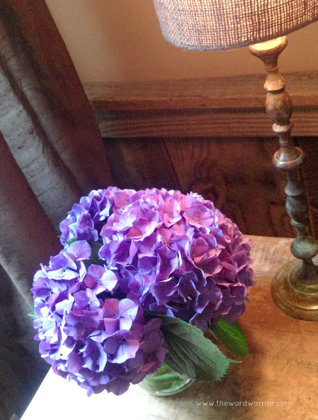 Blog - WW - lifestyle - hydrangeas 2