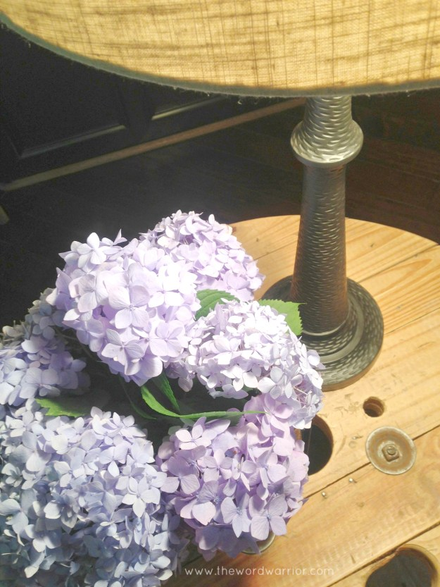 Blog - WW - lifestyle - hydrangeas