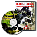 Border Collie Sheepdogs - Off Duty DVD