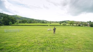 Wide view of the trials ground a Ivy House Sheepdog trials