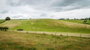 Wide picture of a sheepdog trials ground on  fairly steep, undulating ground.