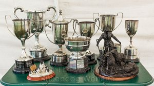 Silver trophies and a bronze statue of a shepherd with dog and sheep.