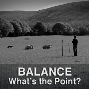 The point of balance is critically important when training or working herding dogs
