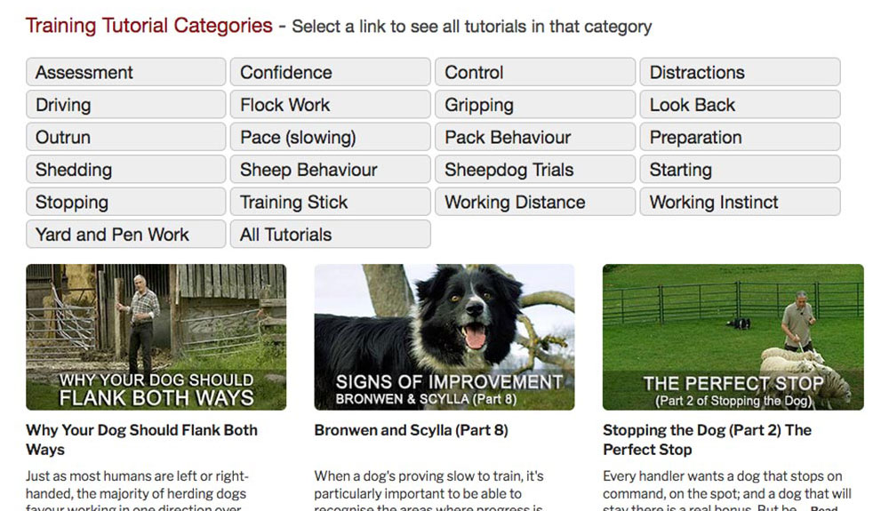 Screen shot showing the new categories and tutorial thumbnails in the tutorials library