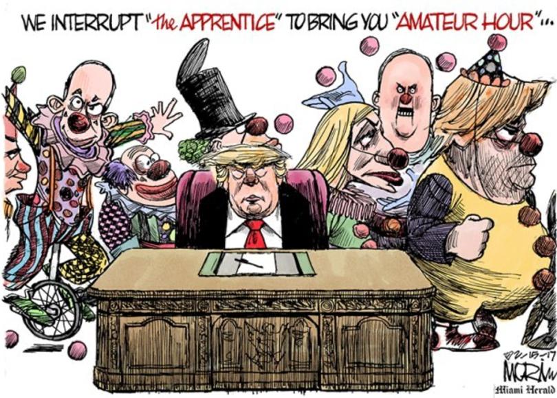 trump clown in chief
