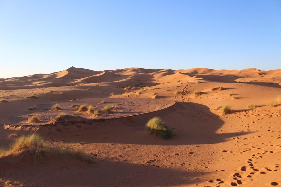Erg Chebbi Dunes in Sahara Desert