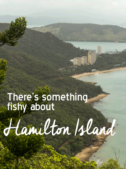 travel blog Hamilton Island