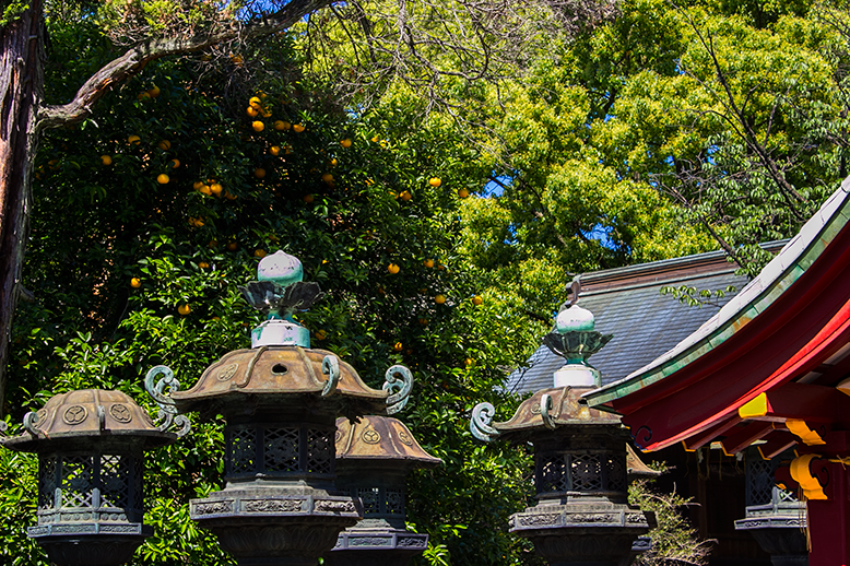 The views and architecture found in Ueno Park in Tokyo, Japan.