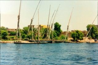 Egypt Aisha Niang_00023A