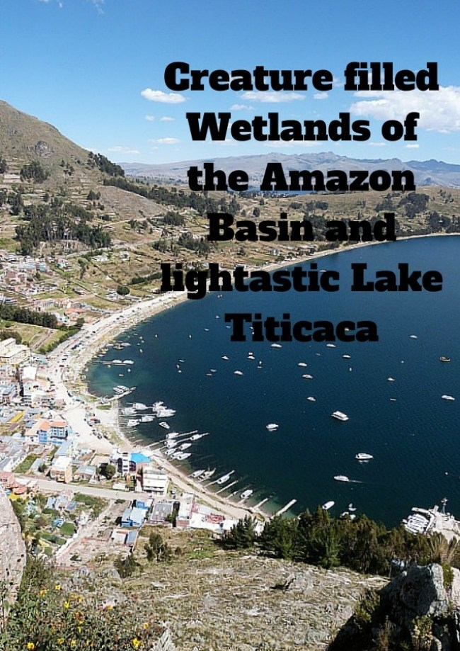 The Amazon Basin and lightastic Lake Titicaca in Bolivia