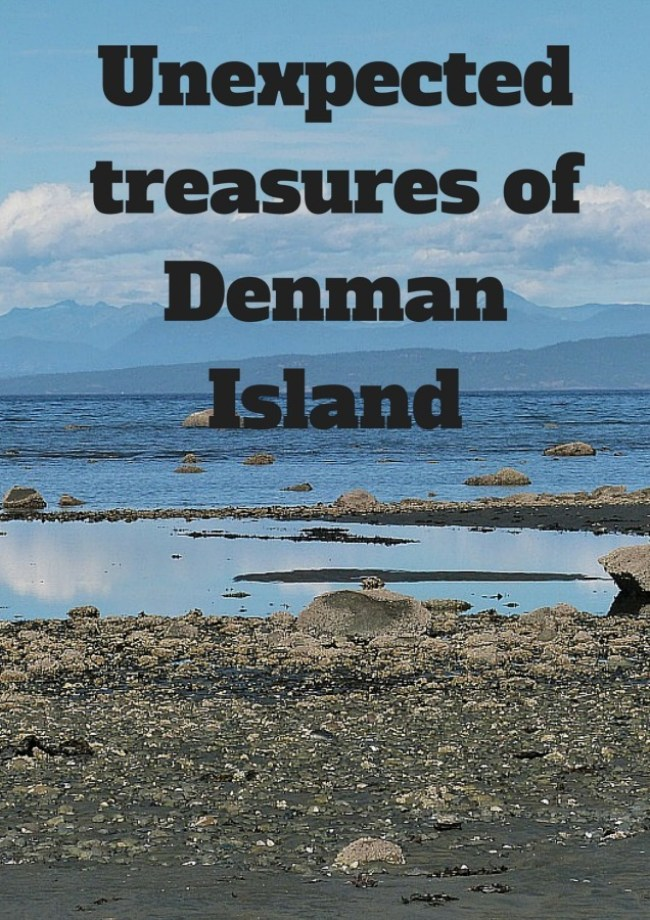 Unexpected treasures of Denman Island