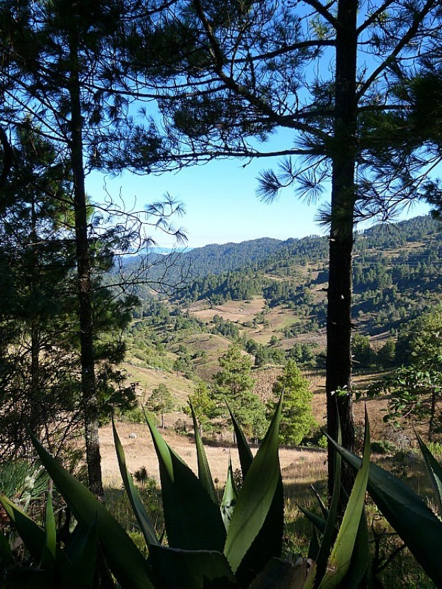 Hiking in Mexico's Sierra Norte Mountains