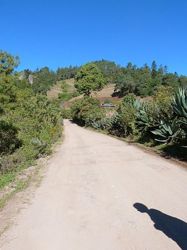 Hiking the Pueblos Mancomunados villages in Mexico's Sierra Norte Mountains