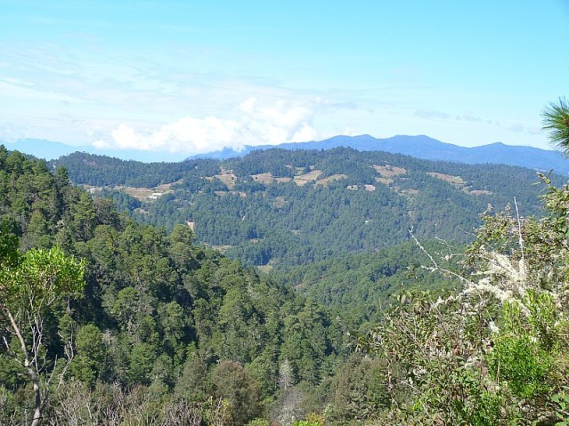 Beautiful views in the Sierra Norte Mountains of Oaxaca while hiking the Pueblos Mancomunados