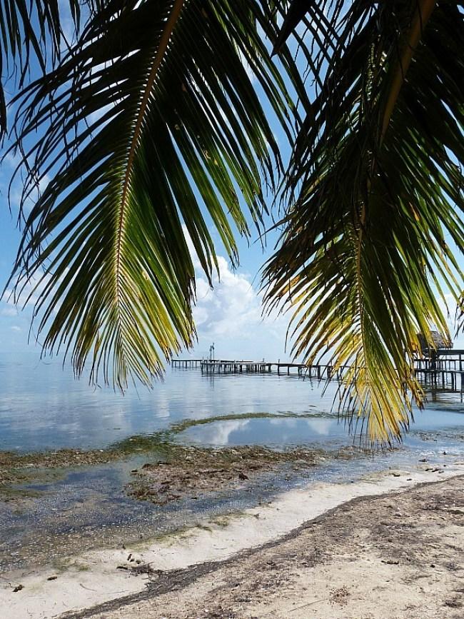 Pier on Caye Caulker, Belize