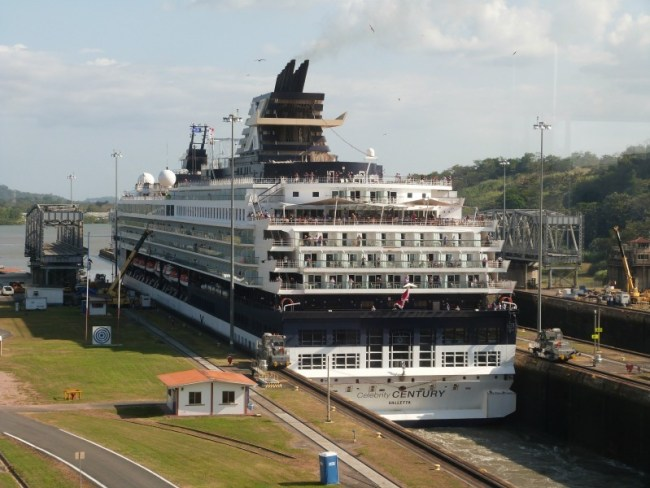 Watching a cruise ship go through the Panama Canal