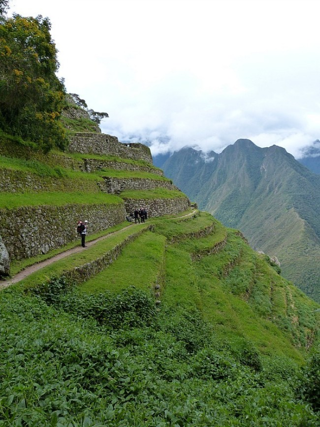 Hiking the terraces on day three of the Inca Trail in Peru