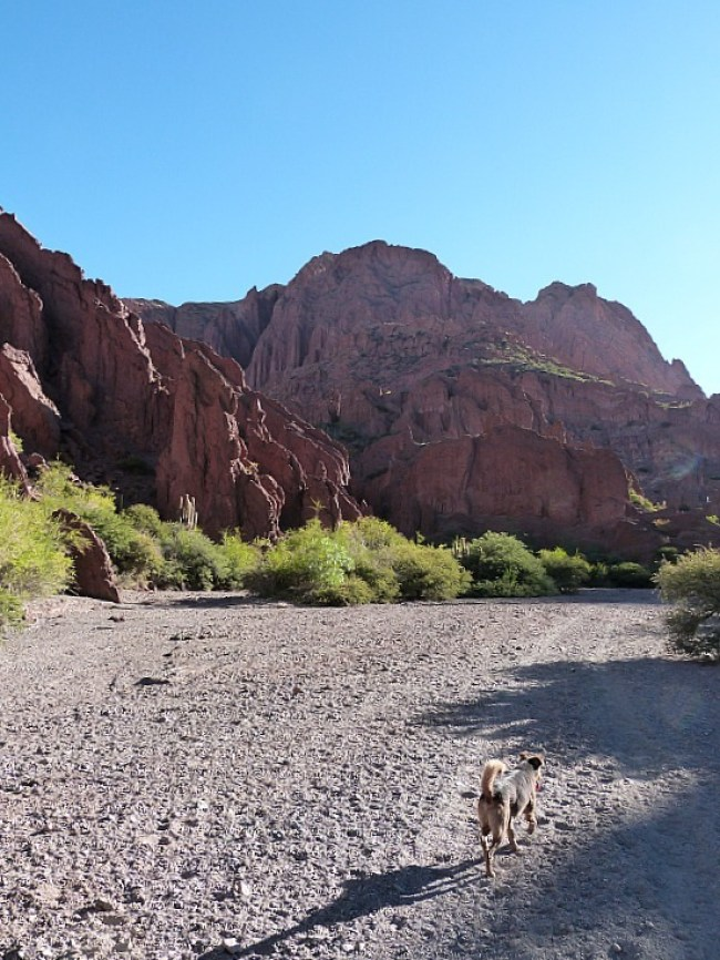 Red rock canyon in Tupiza, Southern Bolivia