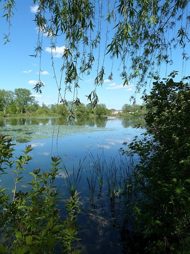 Lake on Centre Island in Toronto