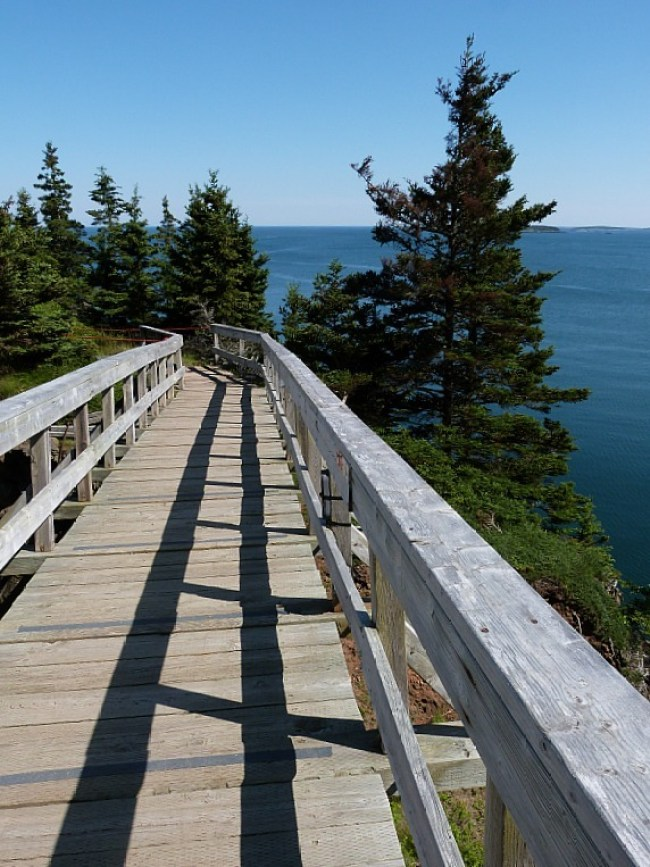 Hiking trail on Grand Manan Island