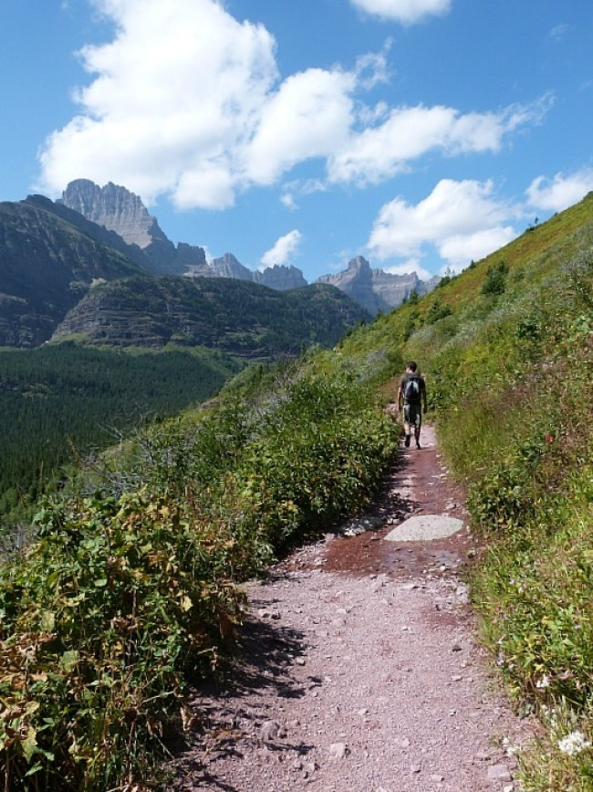 Hiking to Iceberg Lake in Glacier National Park in Montana - a Rocky Mountain Road Trip must