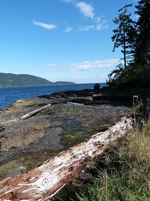 Coastal wandering on Denman Island in Canada