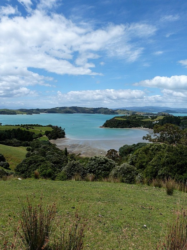 Hiking on Waiheke Island in Auckland affords gorgeous views