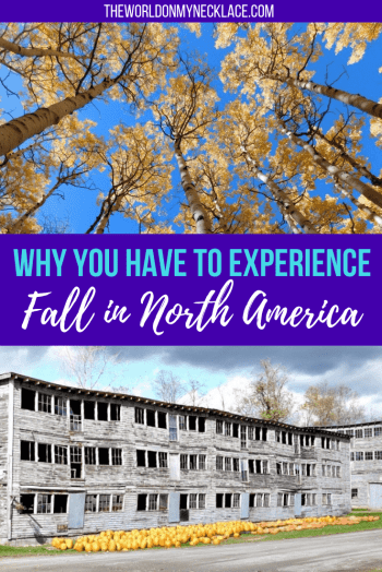 Why you should experience fall in North America