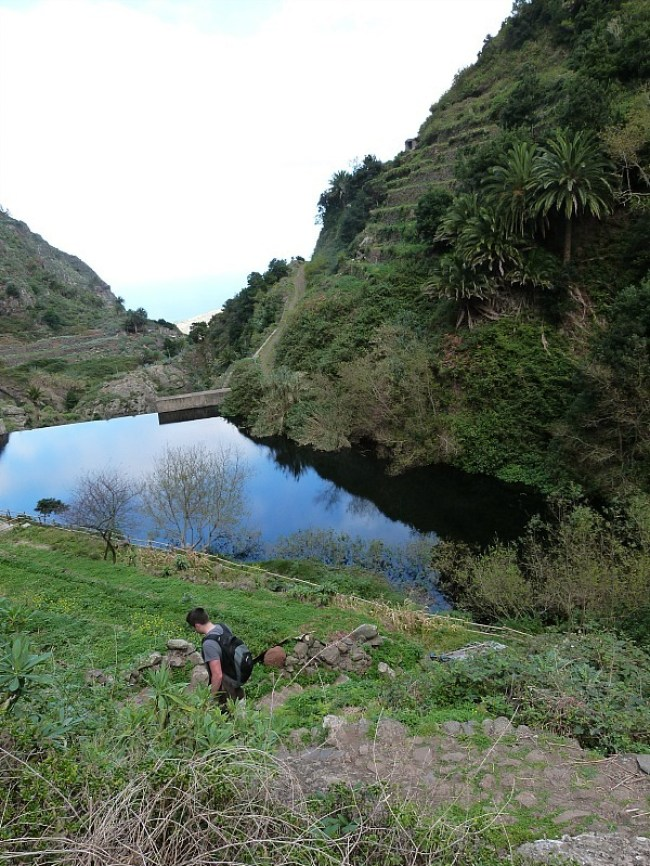 Hiking in Garajonay National Park on La Gomera in the Canary Islands of Spain