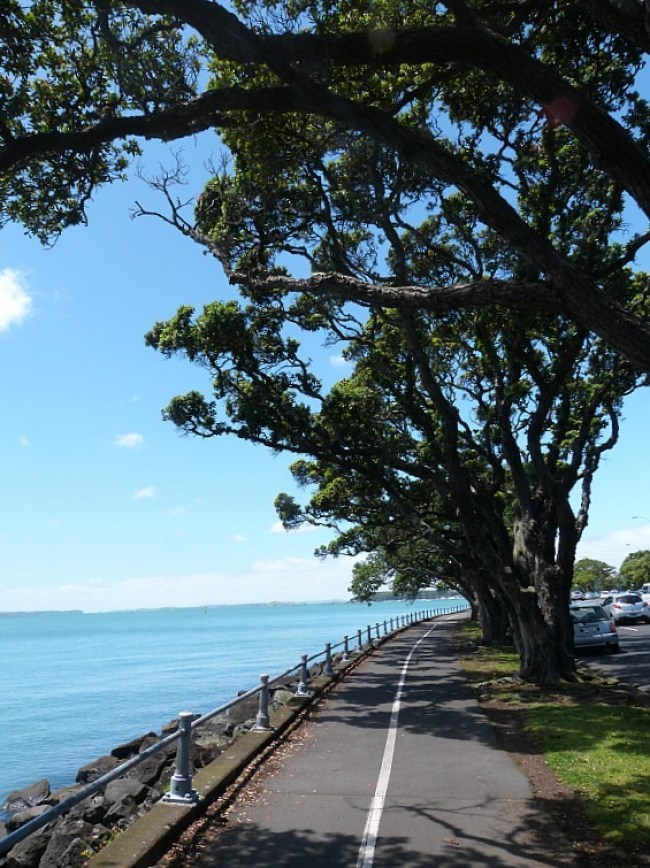 Swimming at Auckland's city beaches - one of the Best Days out in Auckland New Zealand