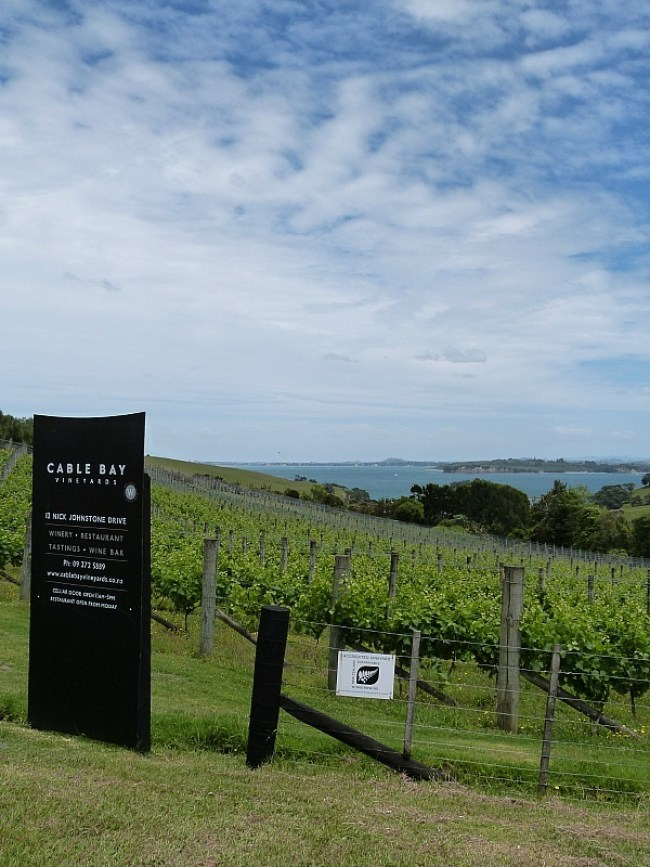 Exploring the wineries of Waiheke Island - one of the Best Days out in Auckland New Zealand