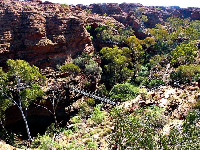 A green valley within Kings Canyon in the Australian Outback