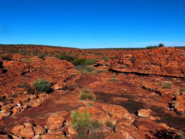 The outback surrounding Uluru in Australia