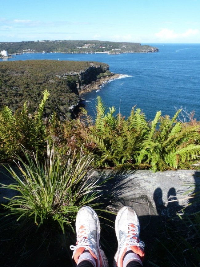 The best views from the Manly to Spit walk