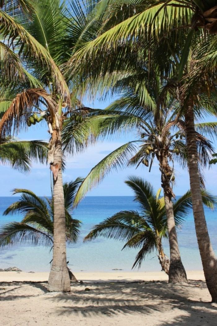 Beautiful Barefoot Island in Fiji