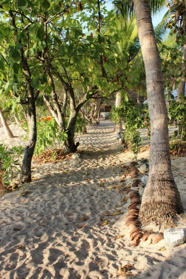 Sandy pathways on Barefoot Island in Fiji