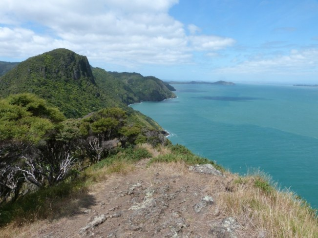 Coastal views from the Hillary Trail in the Waitakere Ranges of Auckland, New Zealand