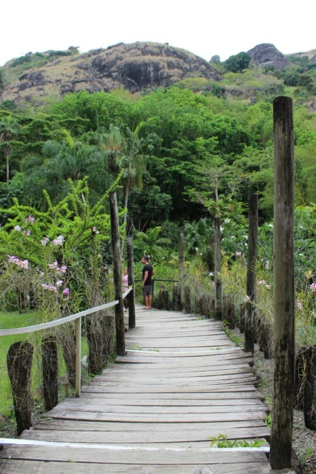 Visiting the Garden of the Sleeping Giant during our half day Nadi tour