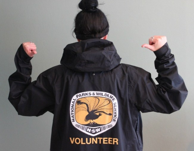 Becoming a Penguin Warden in Manly - a highlight of 2014