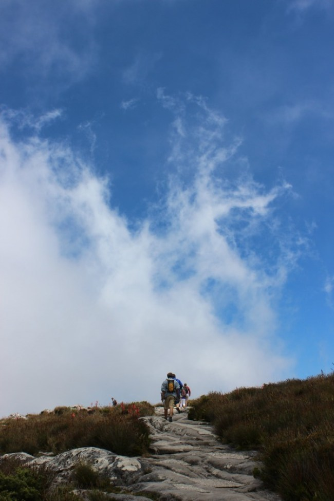 Reaching the top of Table Mountain in Cape Town