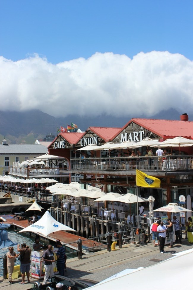 Wandering the V&A Waterfront - one of the best places to visit in Cape Town