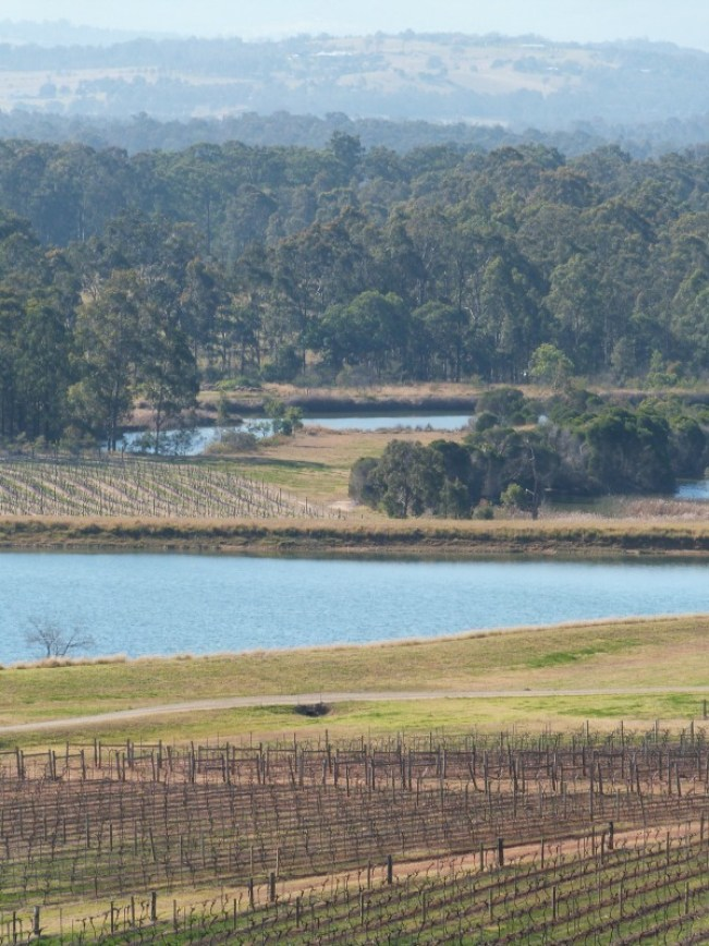 Discovering the Audrey Wilkinson Winery in the Hunter Valley during 2014